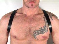 R&Co Shoulder Harness - Standard Size