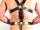 R&Co Full Body Master Harness