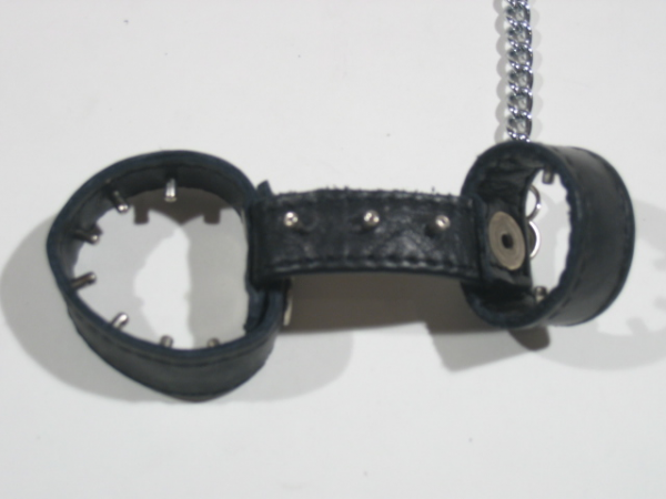 R&Co Cockharness With Chain with Dull Pins