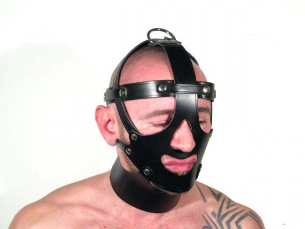 R&Co Leather Head Harness