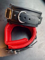 R&Co Lockable Collar padded