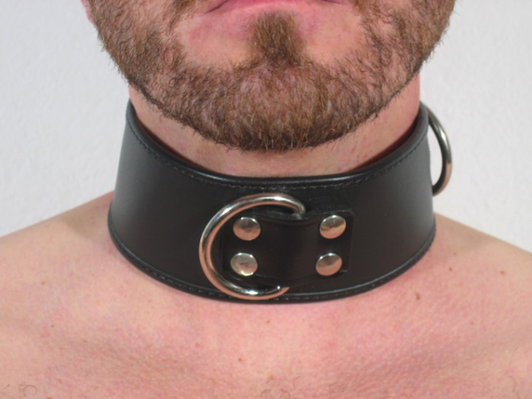 R&Co 6cm wide Dog Collar