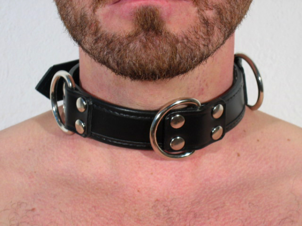 R&Co Slave Collar with 4 D-Rings 3cm wide normal version